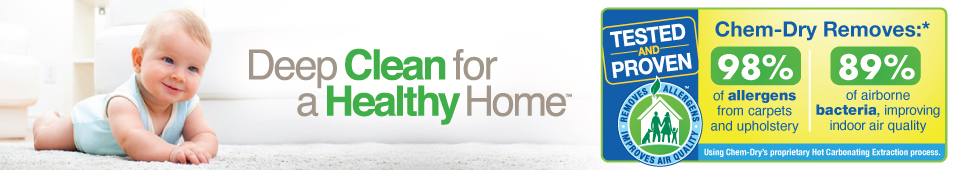 Deep Clean for Healthy Home with allergy icon